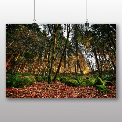 Big Box Art Portland Oregon Forest USA Photographic Print