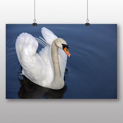 Big Box Art Swan Photographic Print on Canvas