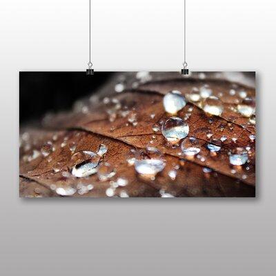 Big Box Art Rain Drops Water No.3 Photographic Print on Canvas