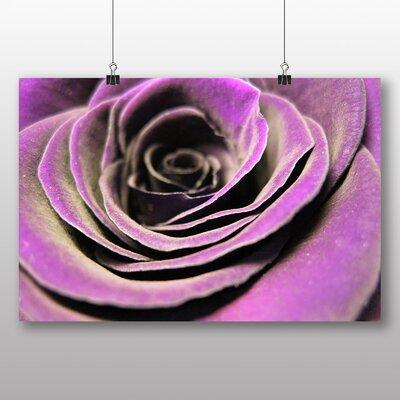 Big Box Art Rose Flower No.4 Photographic Print