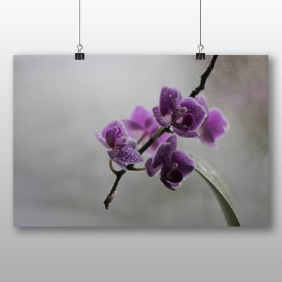 Big Box Art Purple Orchid Flower No.5 Photographic Print