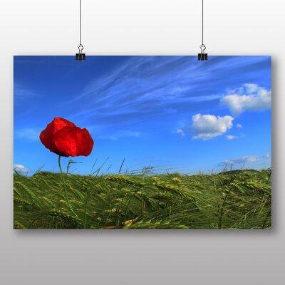 Big Box Art Poppy Flower No.3 Photographic Print