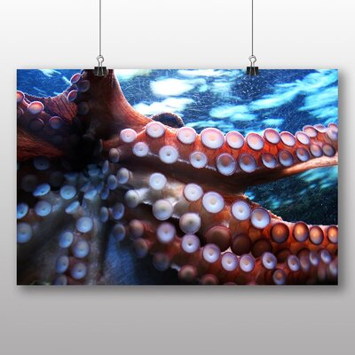 Big Box Art Octopus Photographic Print Wrapped on Canvas