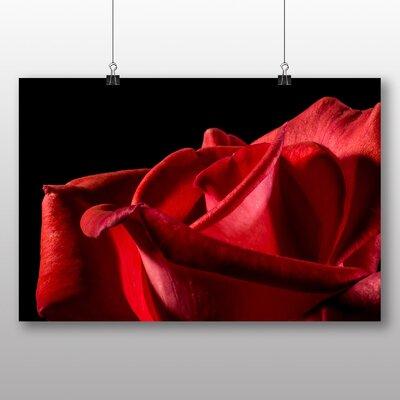 Big Box Art Red Rose Flower No.5 Photographic Print