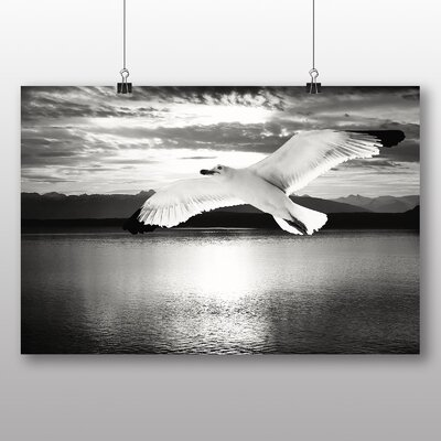 Big Box Art Seagull No.5 Photographic Print Wrapped on Canvas