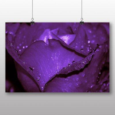 Big Box Art Rose Flower No.5 Photographic Print
