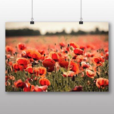 Big Box Art Poppy Field Flower No.1 Photographic Print