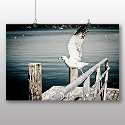 Big Box Art Seagull No.4 Photographic Print Wrapped on Canvas