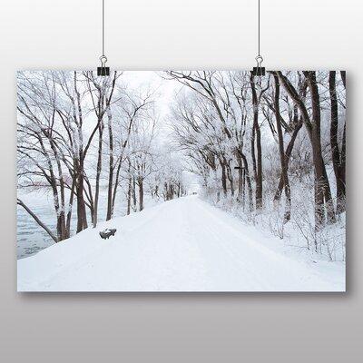 Big Box Art 'Snowy Tree Lined Road' Photographic Print