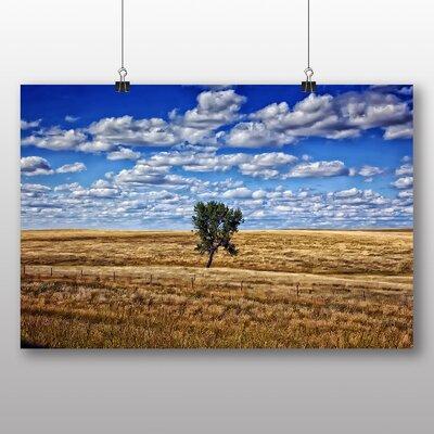 Big Box Art South Dakota Lone Tree USA Photographic Print