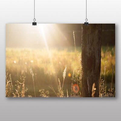 Big Box Art 'Summer Meadow Field No.12' Photographic Print