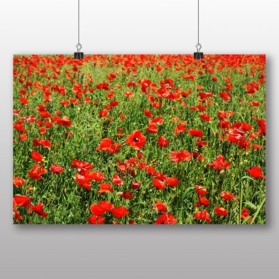 Big Box Art Red Poppy Field Flowers No.3 Photographic Print