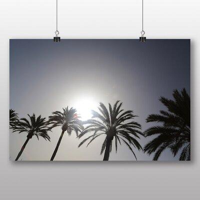 Big Box Art 'Spain Palm Trees' Photographic Print