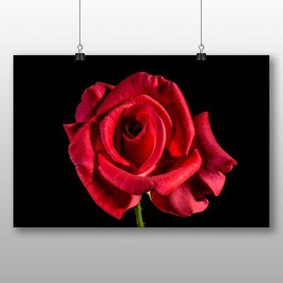 Big Box Art Red Rose Flower No.6 Photographic Print