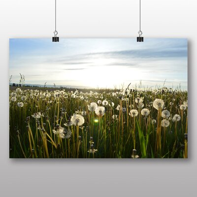 Big Box Art Summer Dandelions Photographic Print on Canvas