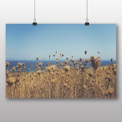 Big Box Art 'Summer Reeds' Photographic Print