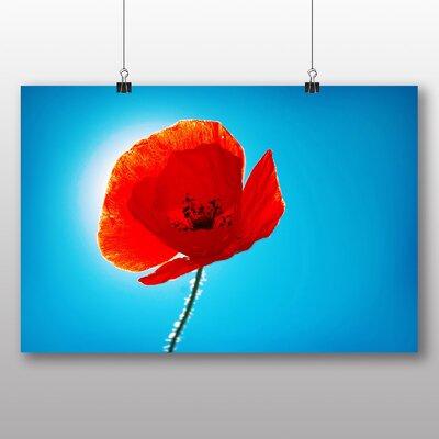 Big Box Art Poppy Flower No.1 Graphic Art
