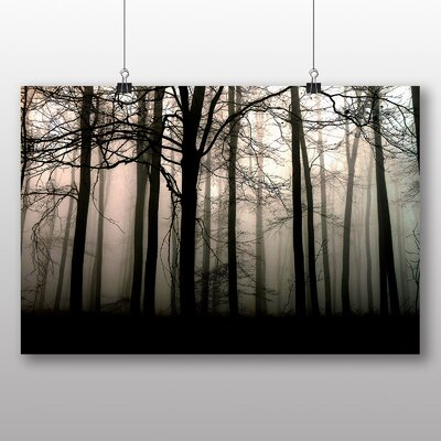 Big Box Art Sunlight Forest Wood No.5 Photographic Print Wrapped on Canvas