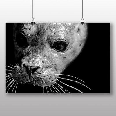 Big Box Art Seal Photographic Print