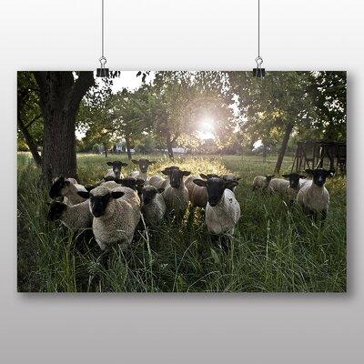 Big Box Art Sheep Flock No.1 Photographic Print Wrapped on Canvas