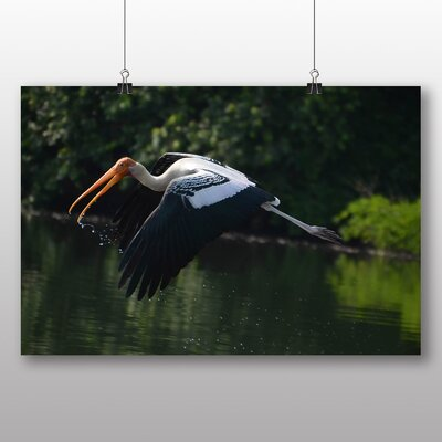 Big Box Art Stork Photographic Print