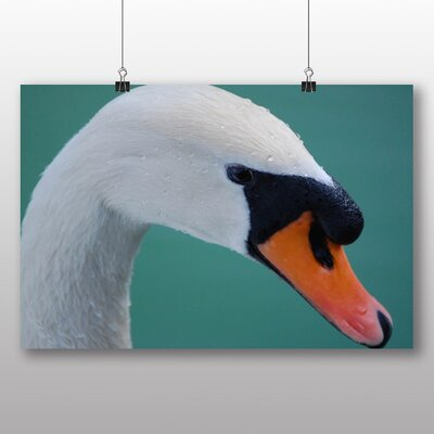 Big Box Art Swan No.4 Photographic Print Wrapped on Canvas
