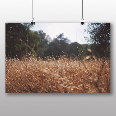 Big Box Art Summer Meadow Photographic Print on Canvas