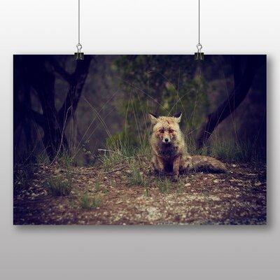 Big Box Art Small Fox Photographic Print