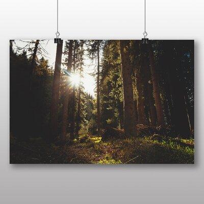 Big Box Art Sunlight Peering Through Forest Photographic Print on Canvas