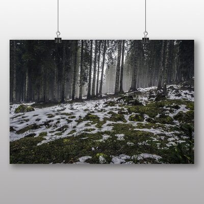 Big Box Art 'Snowy Forest No.2' Photographic Print