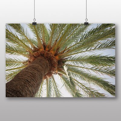 Big Box Art 'Spain Madrid Palm Tree' Photographic Print