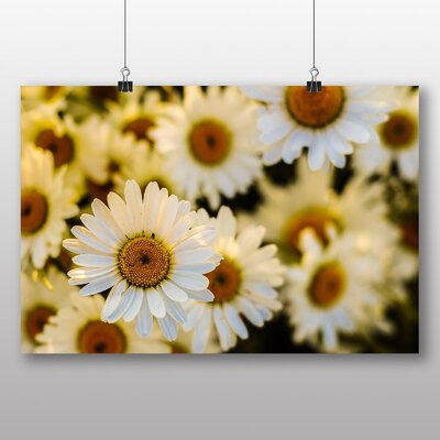 Big Box Art 'Pretty Flowers No.4' Photographic Print
