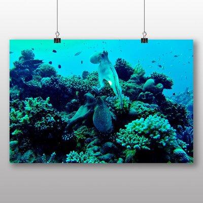Big Box Art Squid Octopus Photographic Print