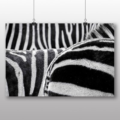 Big Box Art Zebras No.2 Photographic Print