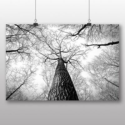 Big Box Art 'Tree Trunk' Photographic Print