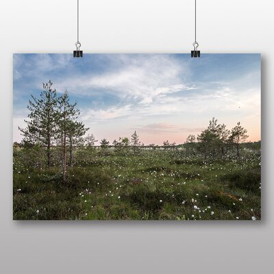 Big Box Art 'Summer Flowers in the Field' Photographic Print