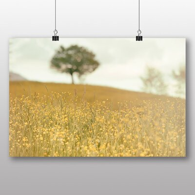 Big Box Art 'Summer Meadow Field No.11' Photographic Print