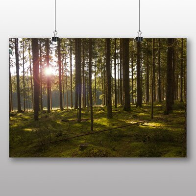 Big Box Art Sunlight Forest Wood No.6 Photographic Print Wrapped on Canvas