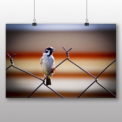 Big Box Art Sparrow No.3 Photographic Print on Canvas