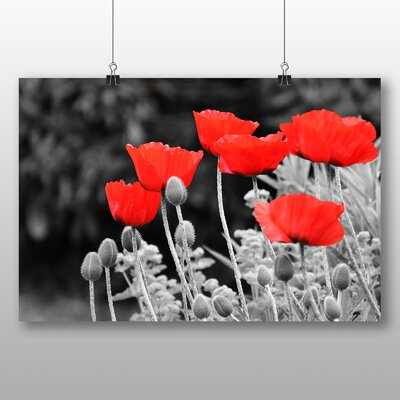 Big Box Art Red Poppy Field Flowers No.7 Graphic Art on Canvas