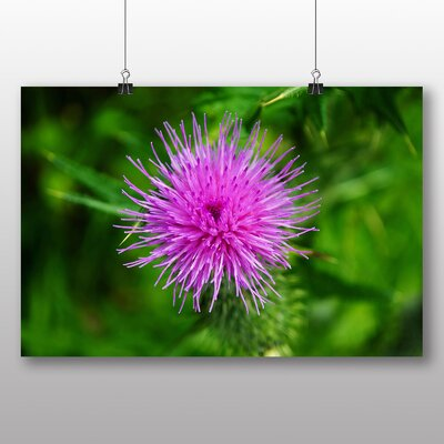 Big Box Art Thistle Flower No.1 Photographic Print Wrapped on Canvas