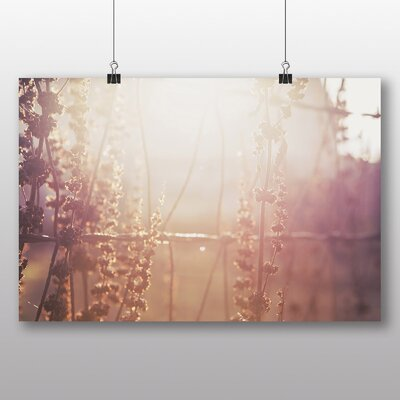 Big Box Art 'Sunlight Flowers and Fencing' Photographic Print