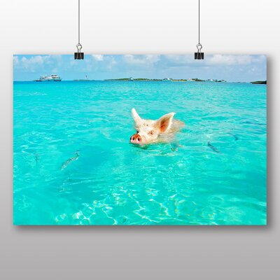 Big Box Art The Bahamas Swimming Pig Photographic Print Wrapped on Canvas