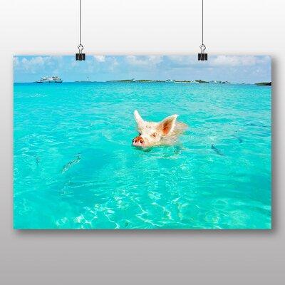 Big Box Art The Bahamas Swimming Pig Photographic Print