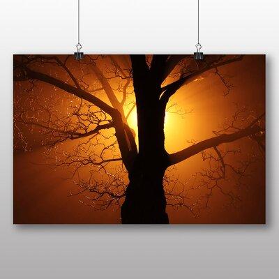 Big Box Art Sunset through Tree No.1 Photographic Print Wrapped on Canvas