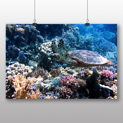 Big Box Art Turtle Coral Reef Photographic Print Wrapped on Canvas