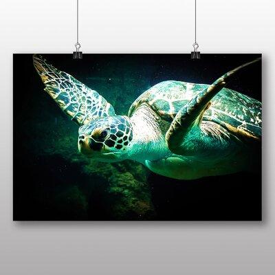 Big Box Art Sea Turtle Photographic Print on Canvas