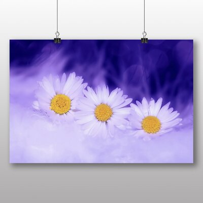 Big Box Art White Daisy Flower No.5 Photographic Print Wrapped on Canvas