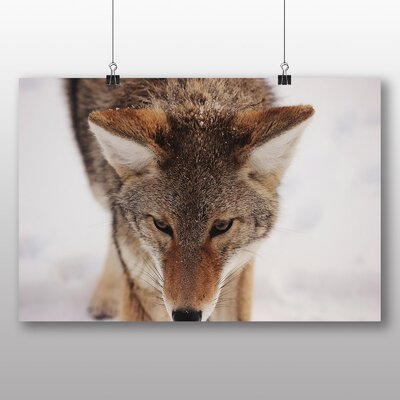 Big Box Art Wolf No.2 Photographic Print Wrapped on Canvas