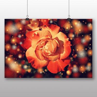 Big Box Art Yellow Orange Rose Flower No.4 Graphic Art